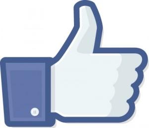 facebook-gef%C3%A4llt-mir.jpg